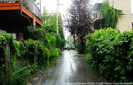 "One of the ""green"" alleys -- Pretty, eh?   Part of a city-driven initiative to turn little alleys like this into an oasis for residents."