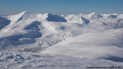 Snow1.1